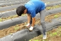충북생명산업고, 졸업생들의 농업정착 도와준다